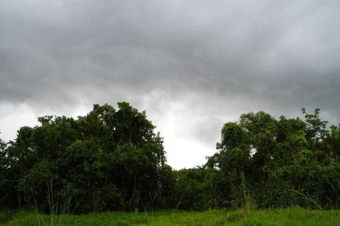 16-DSC00897-foreboding-sky