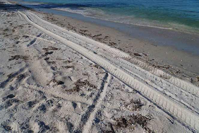DSC07693-x-tire-tracks