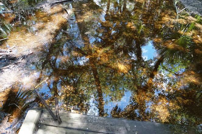 10-DSC01719-reflections-end-of-bridge