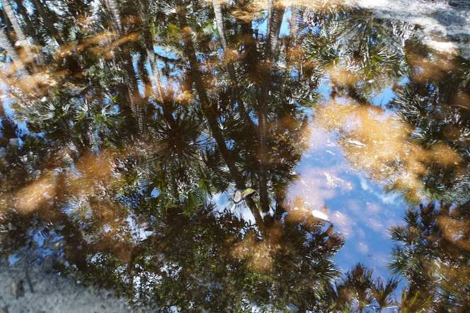 17-DSC01776-reflection-sky-water-colors