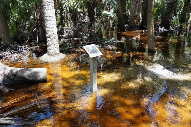 4-DSC01675-sign-in-water
