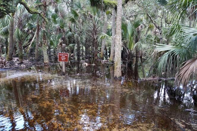 8-DSC01685-cu-sign-path-water