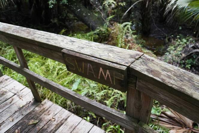 9-DSC02371-swamp-sign-boardwalk