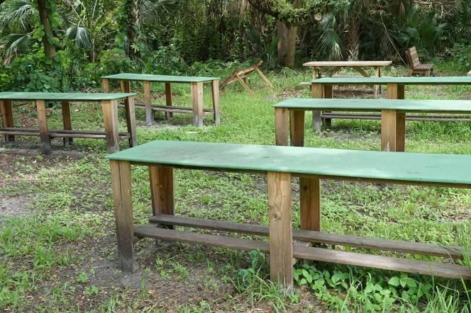 DSC01044-tables-green