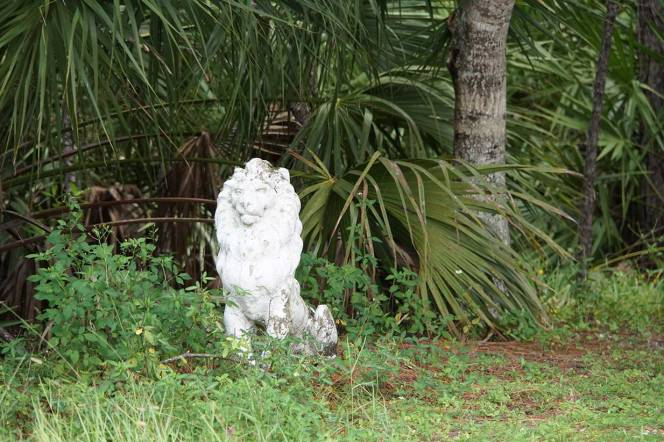 DSC01435-lion